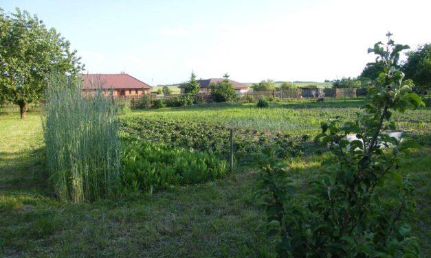 Přírodní zahrada Lazsko